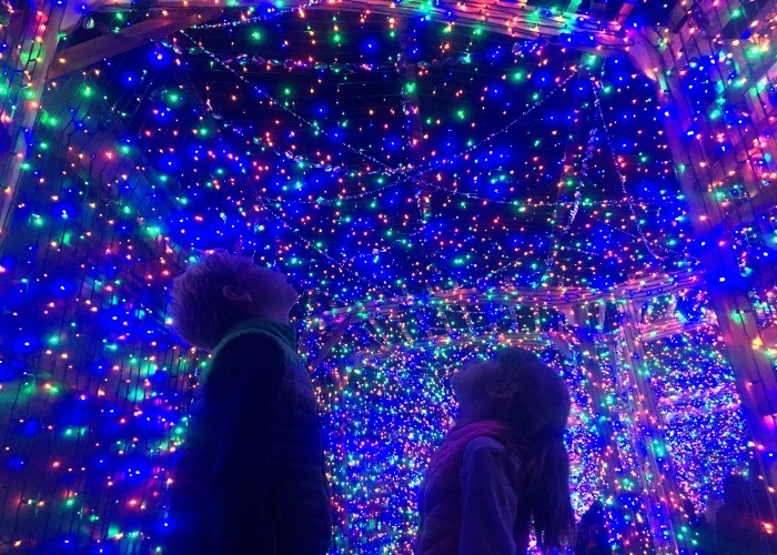 Griffith Park Christmas Lights 2020 The LA Zoo Lights Are Shining Bright November 15th Through January