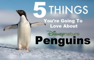 5 Things You'll love about Penguins